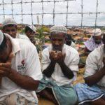 روایت عضو کمیته تحقیق سازمان ملل از جنایت علیه مسلمانان روهینگیا