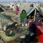 عفو بینالملل: پاکستان از پناهجویان افغانی به عنوان ابزار سیاسی در منازعات استفاده میکند